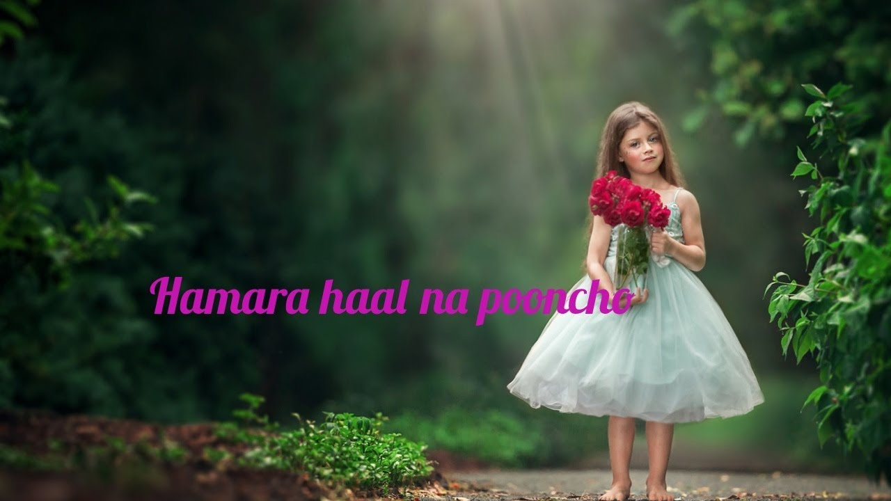 Whatsapp status || Romantic Song || hamara haal na pucho ye duniya female