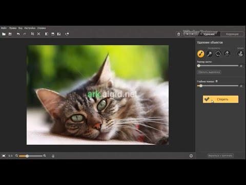 Movavi Photo Editor 1.5.0.  Установка и краткий обзор