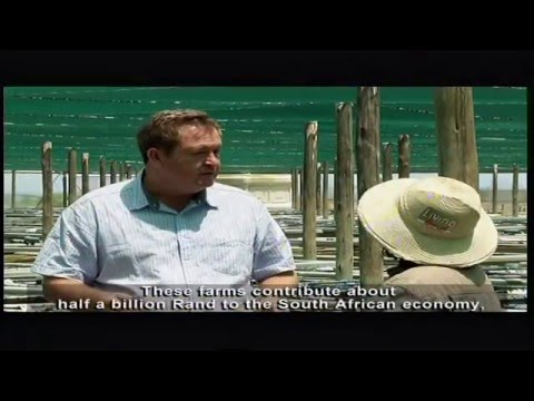 Living Land - Episode 7: Commercial fisheries sector in South Africa