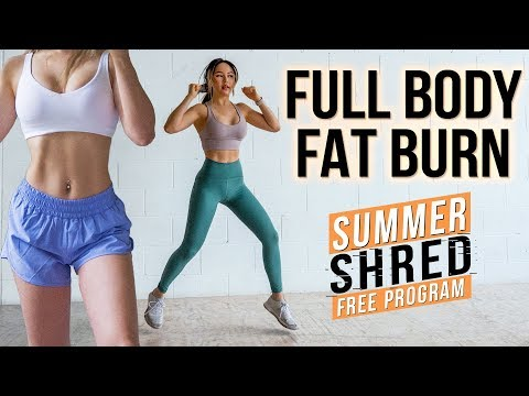 Intense 25 min Full Body FAT BURNING Workout 🙋‍♀️| No Jumping Beginner Friendly