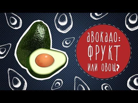 Авокадо: фрукт или овощ?