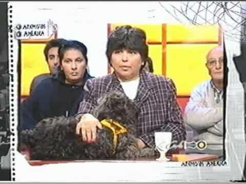 LA CORTE PROGRAMA AMERICA TV