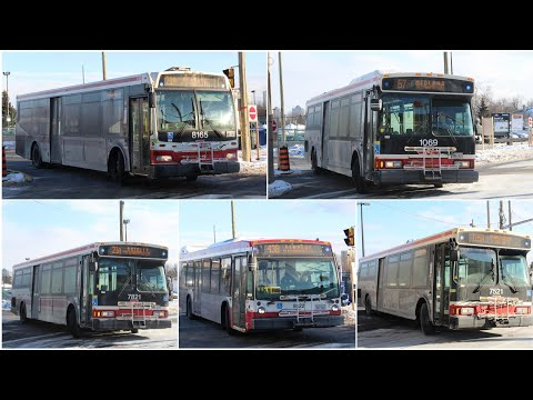 Sorry! TTC Buses at kennedy and Scarborough centre!