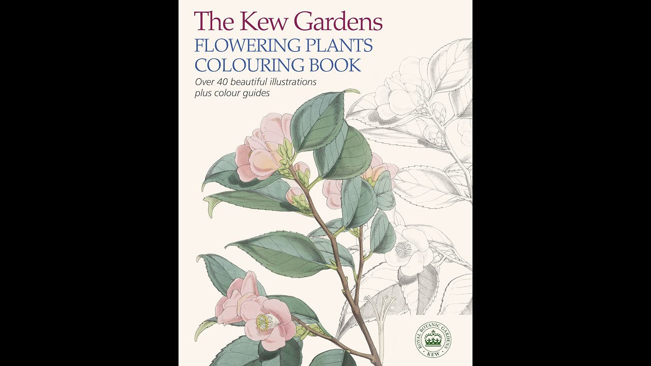 Flip Through The Kew Gardens Flowering Plants Colouring Book - YouTube
