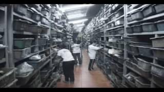 видео производство тарельчатых пружин