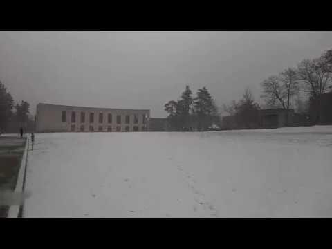 Snow In Glenside, PA Due To Winter Storm Benji