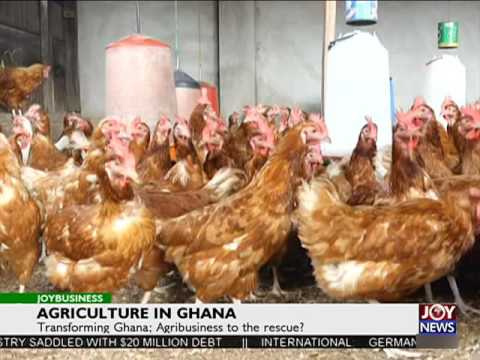 Agriculture in Ghana - Joy Business (19-7-16)