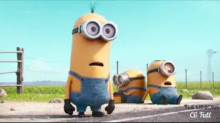 Old Town Road - The Minions Br - (Official Clipe)