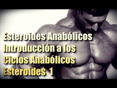 ciclos de los anabolicos