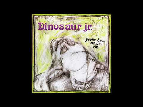 Dinosaur Jr. - You're Living All Over Me (1987) Full Album + Bonus Track