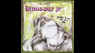 Dinosaur Jr. - You're Living All Over Me (1987) Full Album + Bonus Track