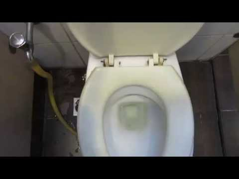 2011 Johnson Suisse toilet on a Low Level Concealed Cistern