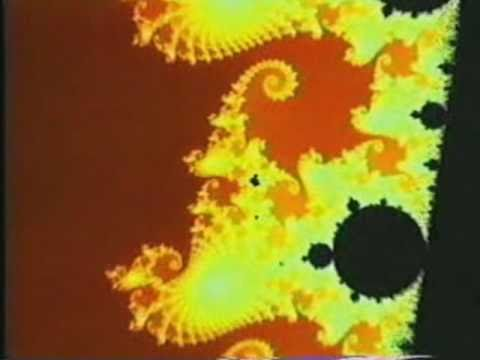 Solar Bears - Primary Colours At The Back Of My Mind