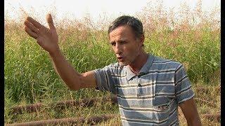Արարատի մարզի ջրազուրկ գյուղերի բողոքը