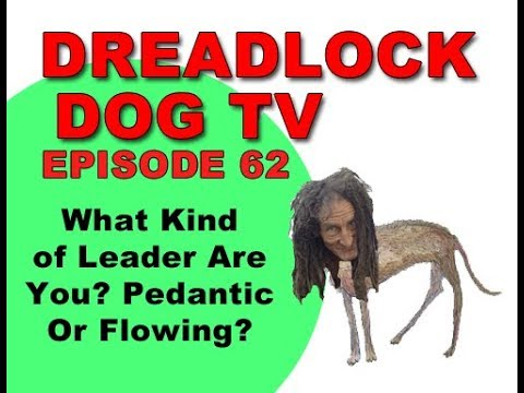 Episode 62   What kind of leader are you? Pedantic or Flowing?