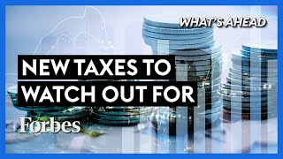 New Taxes Your Business Should Be Aware Of - Steve Forbes | What's Ahead | Forbes