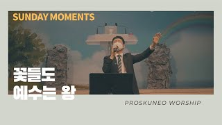 PROSKUNEO | SUNDAY MOMENTS | LIVE | 꽃들도 | 예수는 왕