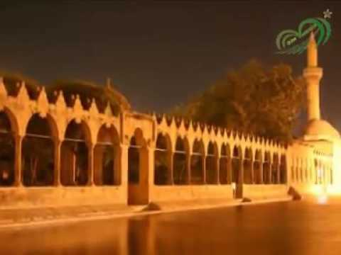 Urfa'da Sıra Geceleri_Arap Atı Gibi Sallar Başını