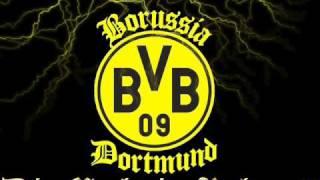 BVB Ein Stern der unsere Farben trägt