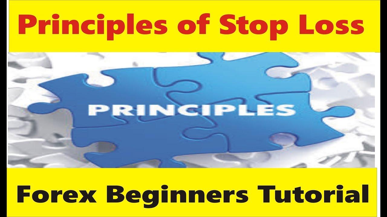 Forex principles