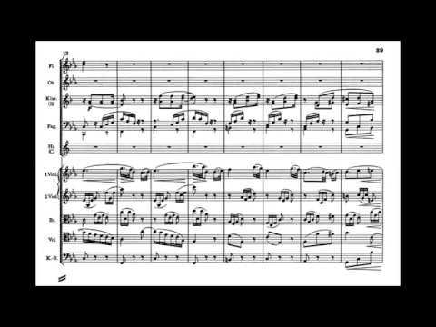 Johannes Brahms - Symphony no.3, op.90 (complete)