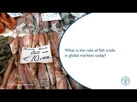 What is the role of fish trade in global markets today?