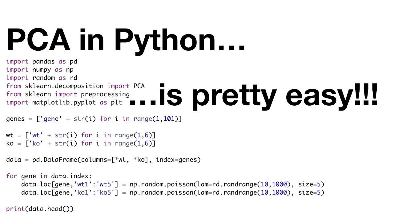 StatQuest: PCA in Python | Statquest