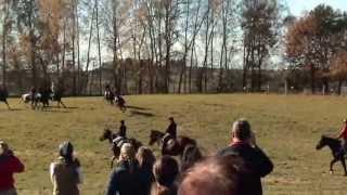 Hubertus 2013 r. Ośrodek Jeździecki Anula