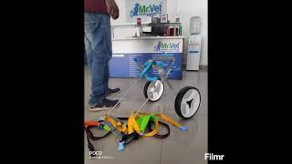 Mintbowl dog wheelchairs Indie shy dog got her new Wheelchair Mob 9979035679 paralyzed handicap cart