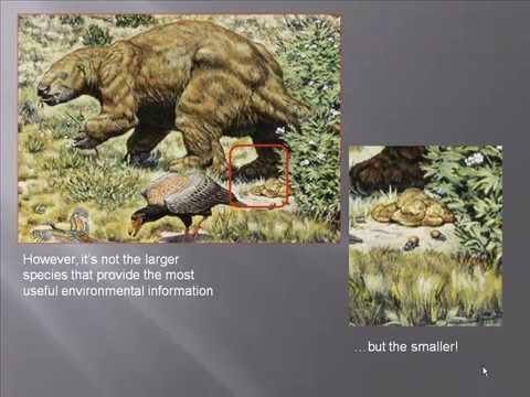 Pleistocene Mammals of North America: Treasures from the La Brea Tar Pits
