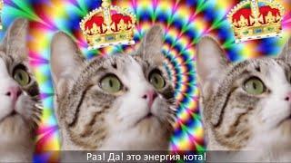 Cекрет энергии – Kitekat® (feat. Кот Борис)