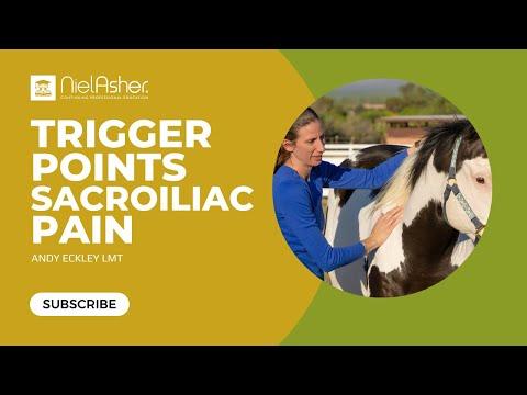 Trigger Points for Horses - Sacroiliac Pain