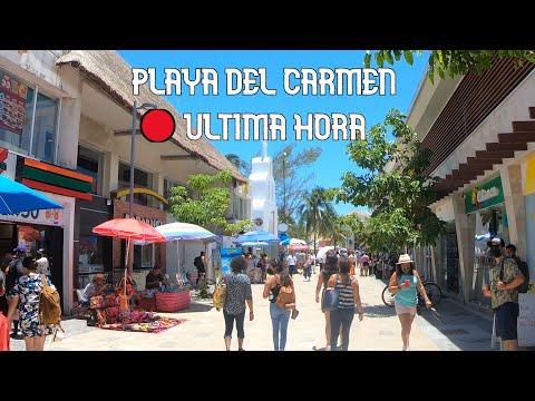 Quinta Avenida Y
