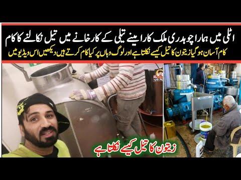 Download Zeton ka teel bnany waly karkhany mein kam    How's work in Italian factory