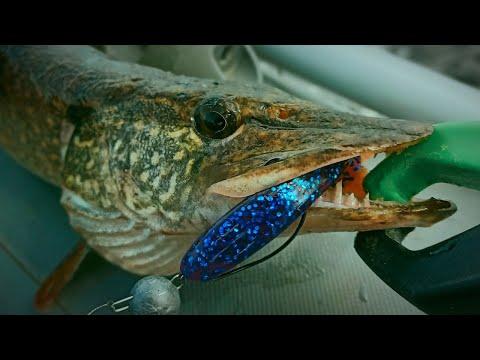 Фиолетовый цвет рулит! Рыбалка на спиннинг в аномальную жару.