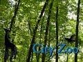 City Zoo | Part 3: Okapi Exhibit - Zoo Tycoon 2