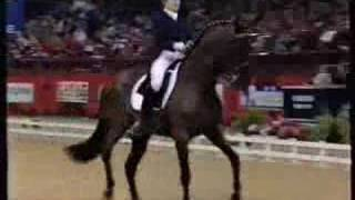 РВП  Dikson Диксон Менькова Grand Prix sporthorse dressage
