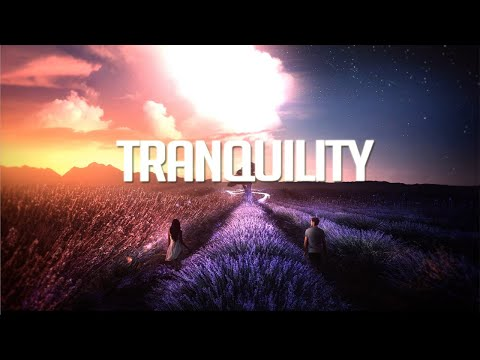 'Tranquility' | Chillstep Mix 2020 [2 Hours]