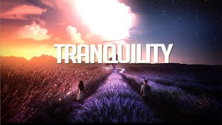 'Tranquility'   Chillstep Mix 2020 [2 Hours]