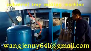 paper pulp molding industrial tray packing machines
