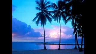 Markus Schulz: GDJB Sunrise Set 2013 (classic trance)