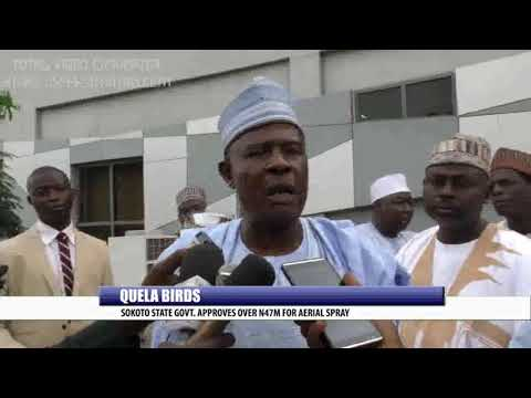 QUELA BIRDS: SOKOTO STATE GOVT. APPROVES OVER N47M FOR AERIAL SPRAY
