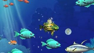 Let's play Feeding Frenzy - Part 4: J. D. the Peter's Fish
