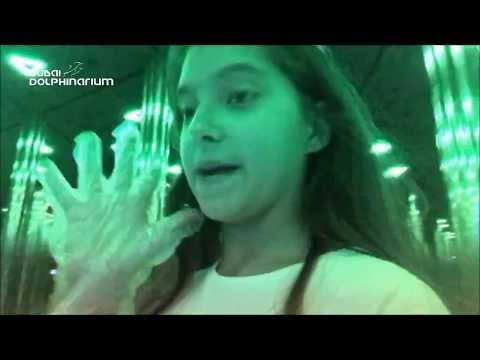 Dubai Dolphinarium Mirror Maze Challenge