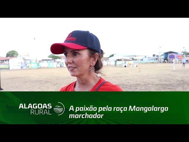 Alagoana fala sobre paixão por cavalos da raça mangalarga marchador