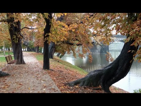 Красивый стих . Осень & Любовь