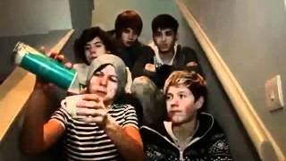 One Direction Funny Moments ... VIDEO DIARY EDITION!