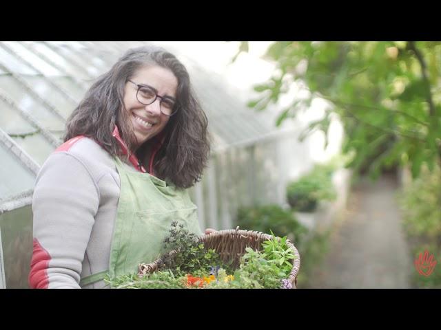 Créer des liens entre la nature et les hommes avec des jardins comestibles en ville
