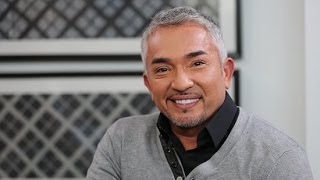 Cesar Millan on How to Introduce Your Dog to a New Baby and More Dog Advice!