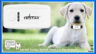 Mini GPS Tracker TK STAR TK909 For Pets Animals